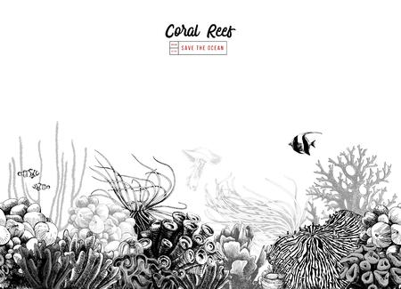 Bordo di corallo senza cuciture bianco e nero disegnato a mano. Illustrazione vettoriale