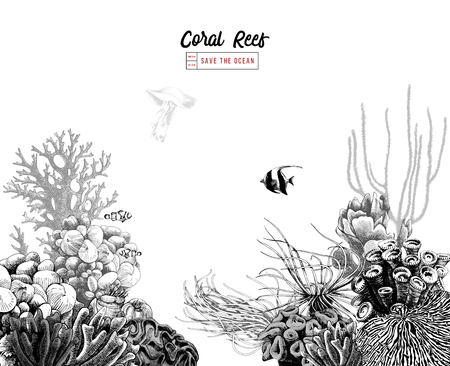 Hand drawn coral reef with tropical fishes