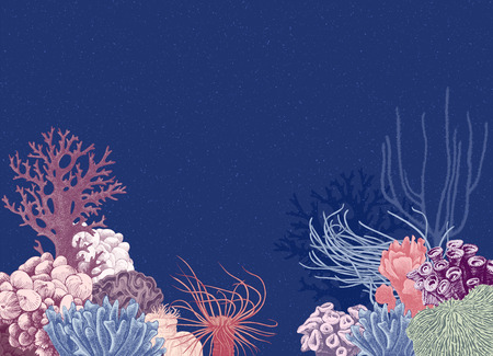Vector background with hand drawn colorful coral reef on dark blue background. Vector illustration in vintage style