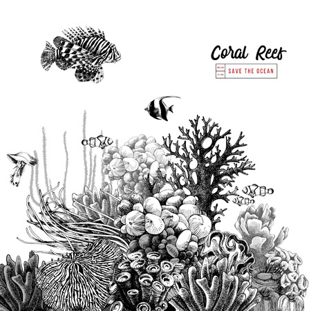 Hand drawn coral reef with tropical fishes. Vector illustration in vintage style Ilustração