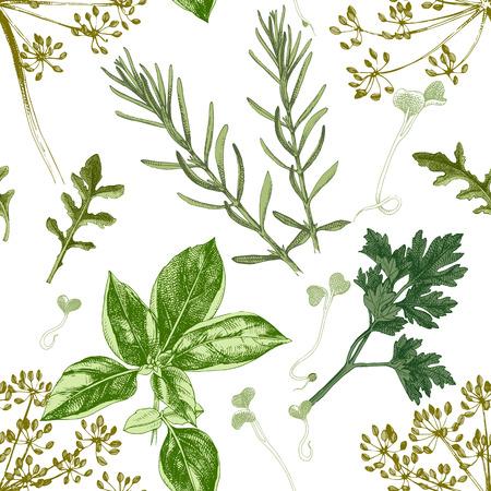 Modello senza cuciture con erbe disegnate a mano