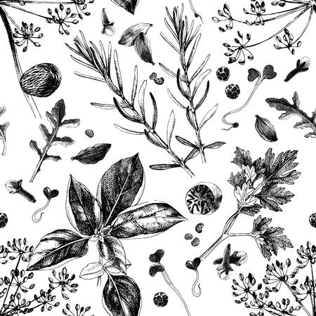 Patrón sin fisuras con hierbas y especias dibujadas a mano. Ilustración de vector de estilo vintage