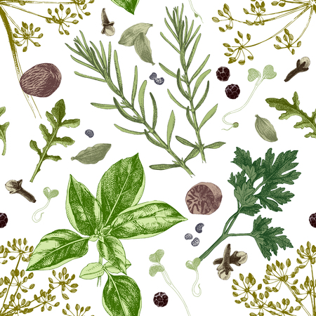 Modello senza cuciture con erbe e spezie disegnate a mano. Illustrazione vettoriale in stile vintage Vettoriali