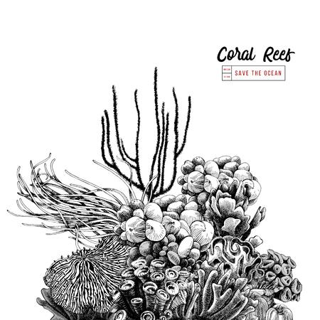 Arrecife de coral dibujado a mano. Ilustración vectorial en estilo vintage