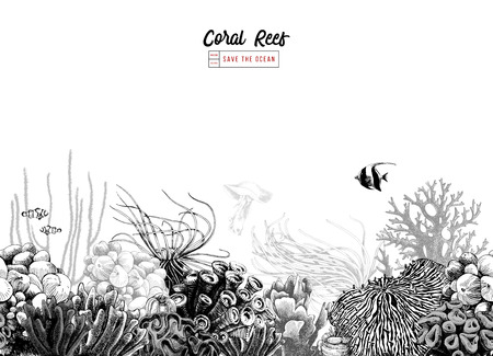 손으로 그린 흑백 원활한 산호 테두리. 벡터 일러스트 레이 션