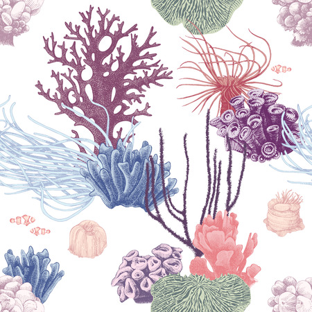 Seamless pattern with colorful hand drawn coral reef on white background. Vector illustration in vintage style