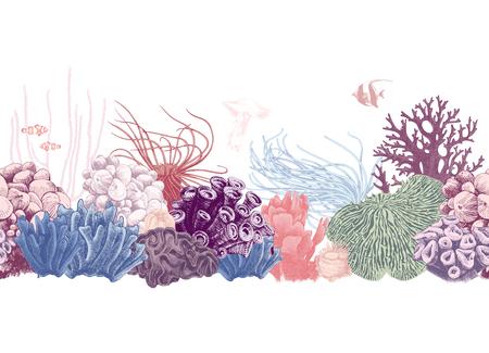 Bordure de récif de corail sans couture colorée dessinée à la main. Illustration vectorielle