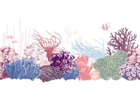 Hand drawn colorful seamless coral reef border. Vector illustration