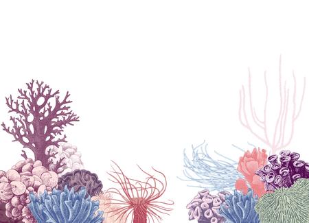 Fond de vecteur avec récif de corail coloré dessiné à la main. Illustration vectorielle dans un style vintage Vecteurs