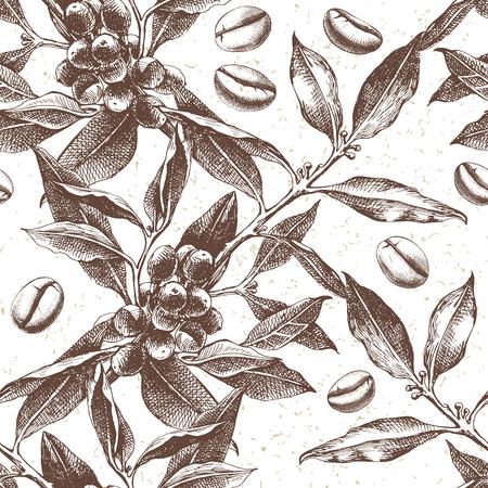 Gelast patroon met handgetekende koffieplant en bonen. vectorillustratie in retro stijl