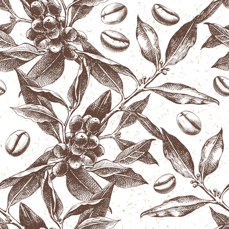 Seamles pattern with hand drawn coffee plant and beans. vector illustration in retro style