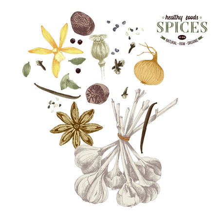Background with hand drawn spices Imagens - 107813952