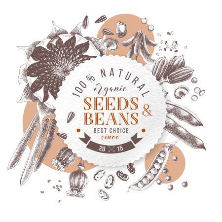 Seeds and beans round emblem over hand drawn plants - sunflower, soy, sesame, poppy, pear, French beans. Vector illustration in retro style