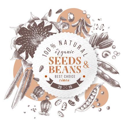 Semillas y frijoles emblema redondo sobre plantas dibujadas a mano: girasol, soja, sésamo, amapola, pera, frijoles franceses. Ilustración vectorial en estilo retro Ilustración de vector