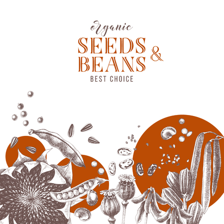 Background with hand drawn seeds and beans. Vector illustration in retro style. Vegan food concept