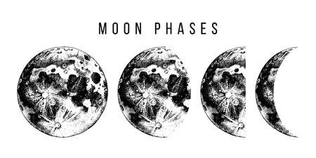 Fases de la luna. Ilustración de vector dibujado a mano