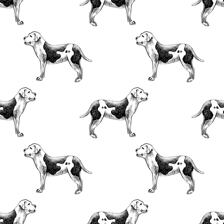 Hand drawn seamless pattern with american bulldogs