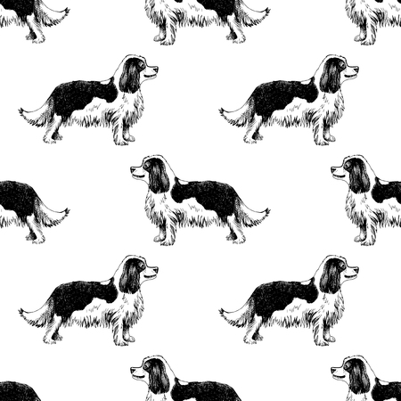 Seamless pattern with Hand drawn King Charles Spaniels Illustration