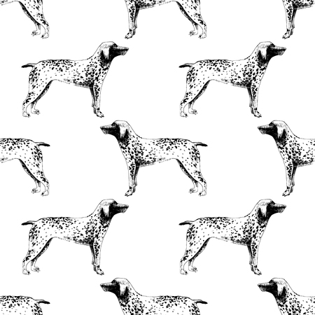 Seamless pattern with hand drawn German Shorthaired Pointers. Vector illustration in retro style