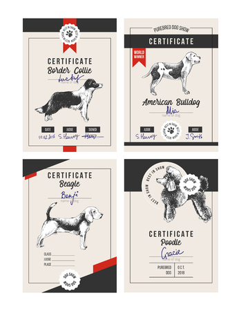 4 dog show certificates Stock Illustratie