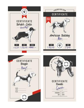 4 dog show certificates Illustration