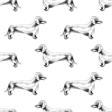 Nahtloses Muster mit handgezeichneten Dackeln Vektorgrafik