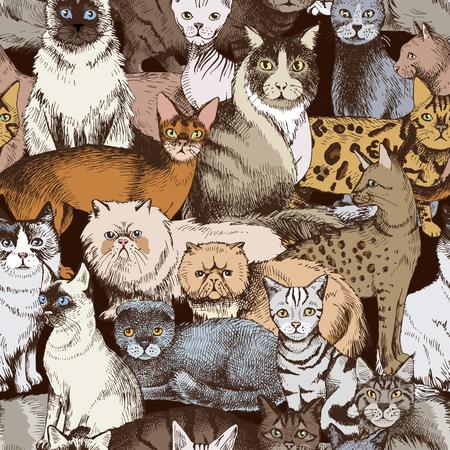 Nahtloses Muster mit 16 bunten handgezeichneten reinrassigen Katzen. Vektor-Illustration Vektorgrafik