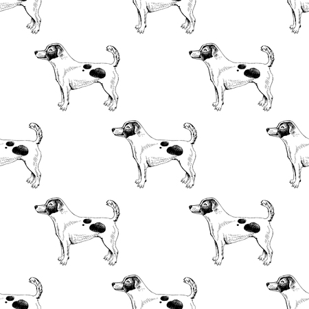 Seamless pattern with hand drawn Jack Russel terriers