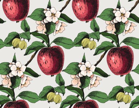 Seamless pattern with apple branches Illustration