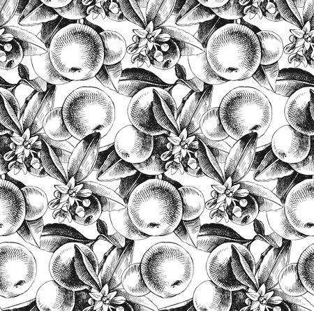 Seamless pattern with hand drawn mandarin branches. Vector illustration