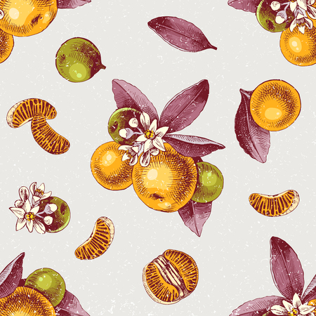 Seamless pattern with hand drawn mandarin branches and slices. Vector illustration