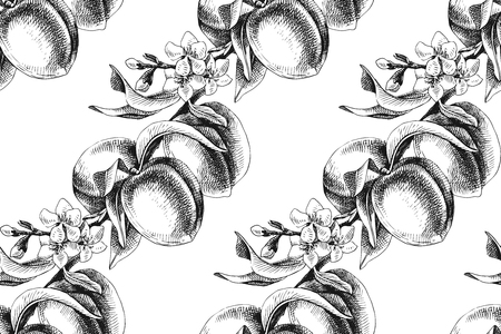 Black and white peach branches with fruits and flowers seamless pattern. Vector illustration