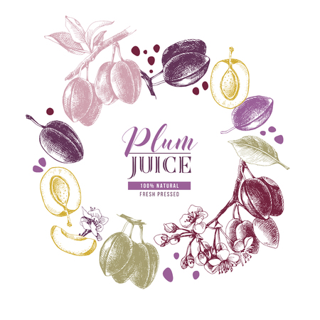 Composition colorée en cercle avec des prunes et des fleurs dessinées à la main. Illustration vectorielle