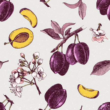 Seamless pattern with hand drawn plum flowers and fruits. Vector illustration