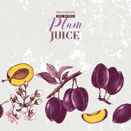 Background with seamless plum border. Vector illustration