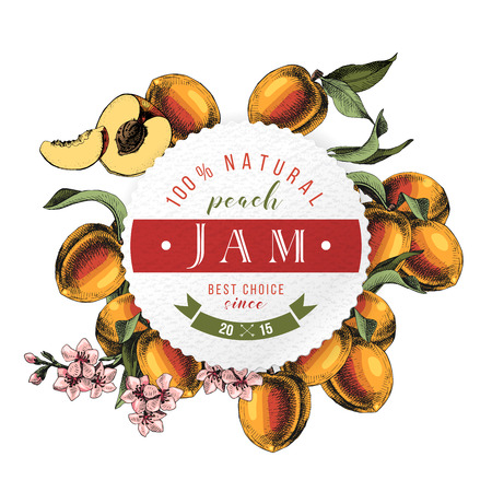 Peach jam paper emblem over hand drawn peach branches Vettoriali