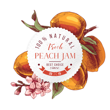 Peach jam paper emblem over hand drawn peach branche 向量圖像