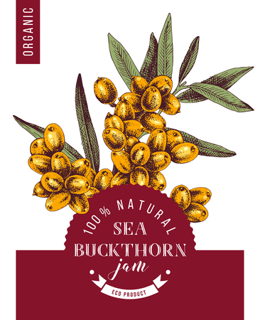 Sea buckthorn jam emblem over bright hand drawn sea buckthorn branch. Vector illustration