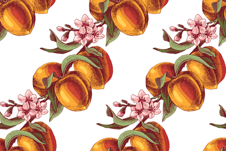 Colorful peach branches with fruits and flowers seamless pattern. Vector illustration Ilustração