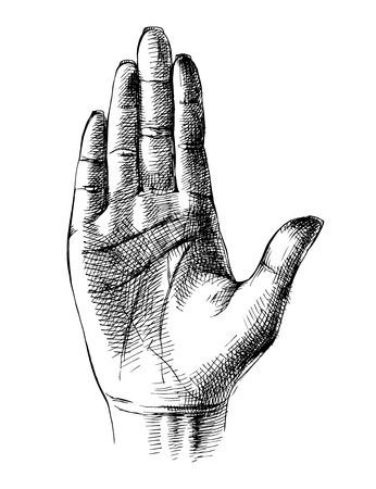 Sketched palm hand