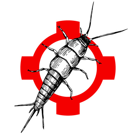 Hand drawn silverfish on crosshair