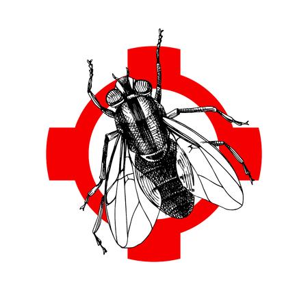 Hand drawn fly on crosshair. Vector illustration. Illustration