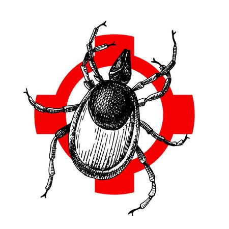 Hand drawn wood tick on crosshair. Vector illustration