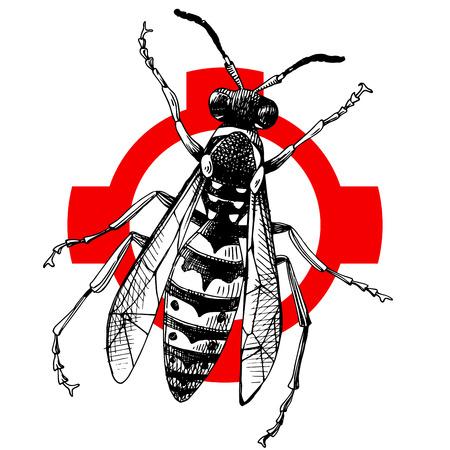 Handgezeichnete Wespe auf Schraffur