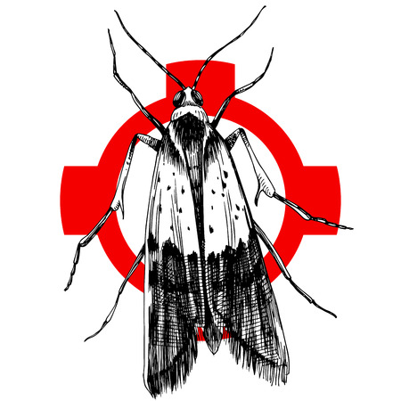 Hand drawn food moth on crosshair. Vector illustration Illustration