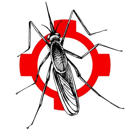 Hand drawn mosquito on crosshatch