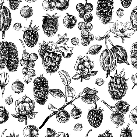 Black and white seamless pattern with hand drawn berries. Vector illustration 向量圖像