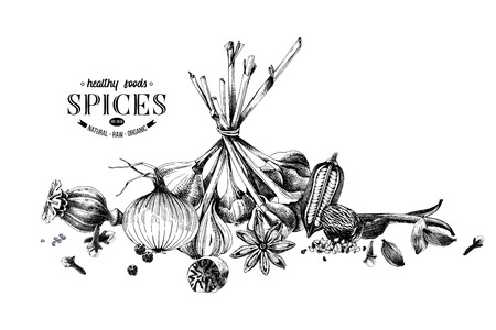 Hand drawn spices border. Can be used for poster, banner, placard or menu design. Vector illustration Иллюстрация