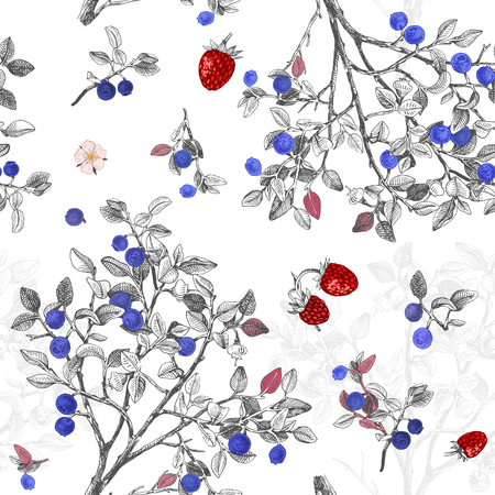 Seamless pattrn with blueberry bushes