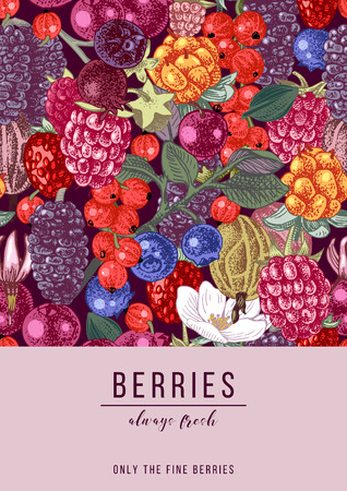 Vertical banner with hand drawn berries and place for your type design. Vector illustration Illustration